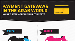 Payment gateways in the Arab world 2013