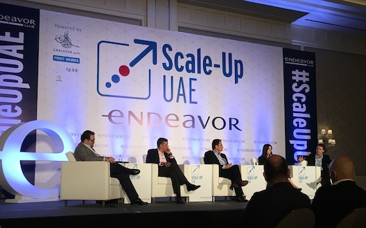 The Endeavor Scale-Up panel
