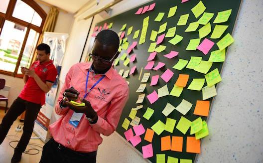 Impact Camp's participants